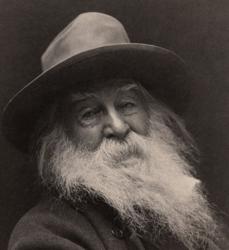 Libri di Walt Whitman