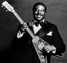 Albert King Cover